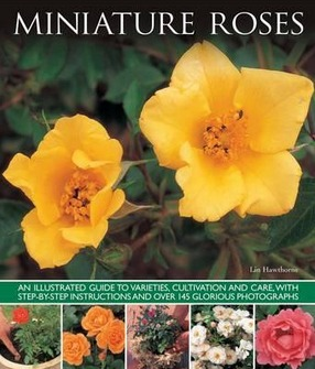Image for Miniature Roses: An Illustrated Guide to Varieties, Cultivation and Care, with Step-by-step Instructions and Over 145 Glorious Photographs