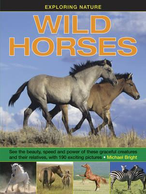 Image for Exploring Nature Wild Horses: Discover the beauty, speed and power of these graceful creature and their relatives