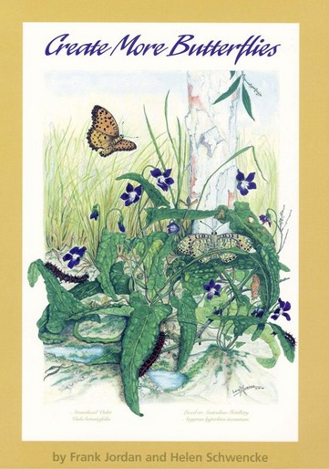 Image for Create More Butterflies : a guide to 48 butterflies and their host-plants for south-east Queensland and northern New South Wales *** TEMPORARILY OUT OF STOCK ***