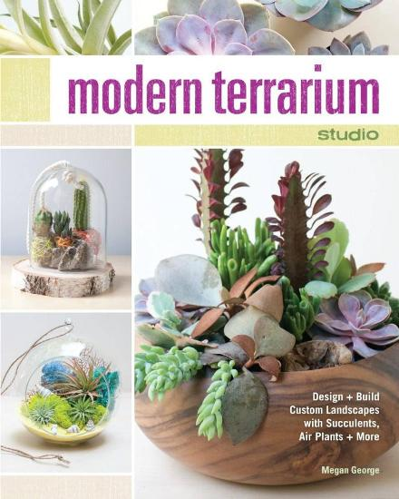 Image for Modern Terrarium Studio: Design and Build Custom Landscapes with Succulents, Air Plants and More
