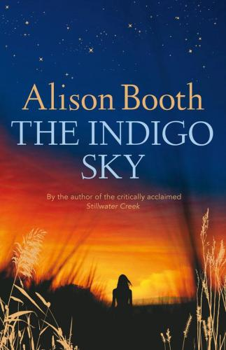 Image for The Indigo Sky [used book]