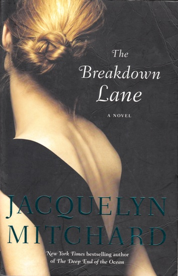 Image for The Breakdown Lane [used book]