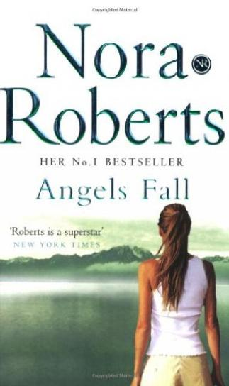 Image for Angels Fall [used book]