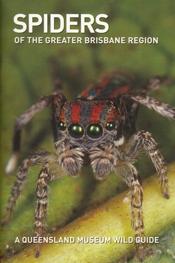 Image for Spiders of the Greater Brisbane Region: A Queensland Museum Pocket Wild Guide