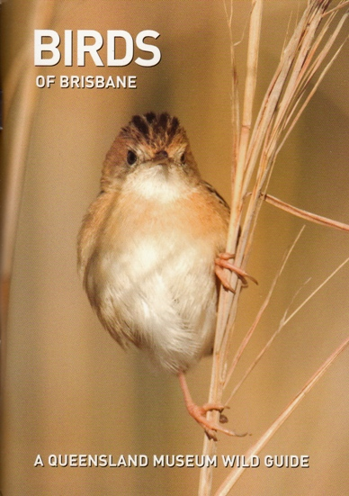 Image for Birds of Brisbane: A Queensland Museum Pocket Wild Guide