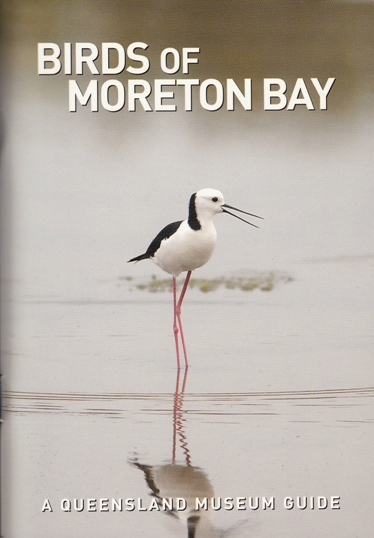 Image for Birds of Moreton Bay: A Queensland Museum Pocket Wild Guide *** TEMPORARILY OUT OF STOCK ***