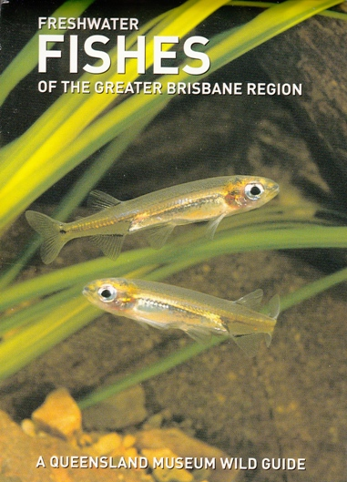 Image for Freshwater Fishes of the Greater Brisbane Region: A Queensland Museum Pocket Wild Guide