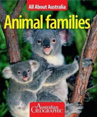 Image for Animal Families: All About Australia # Australian Geographic