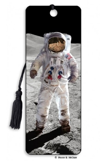 Image for Moon Walk 3D Bookmark