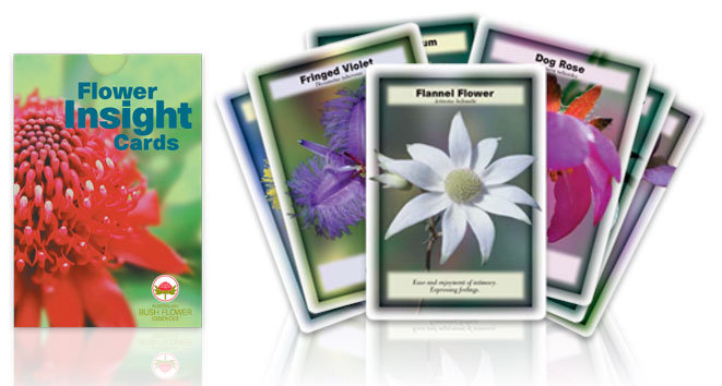 Image for Flower Insight Cards: 69-card deck