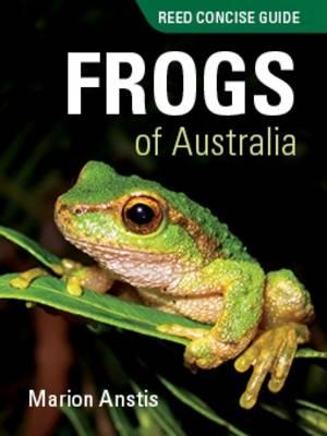 Image for Frogs of Australia # Reed Concise Guide