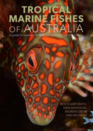 Image for Tropical Marine Fishes of Australia: A Guide for waters from the Abrolhos Islands to Lord Howe Island