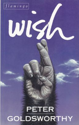 Image for Wish : A Biologically Engineered Love Story [used book]