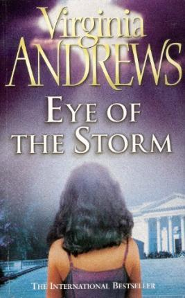 Image for Eye of the Storm #3 Hudson Family [used book]