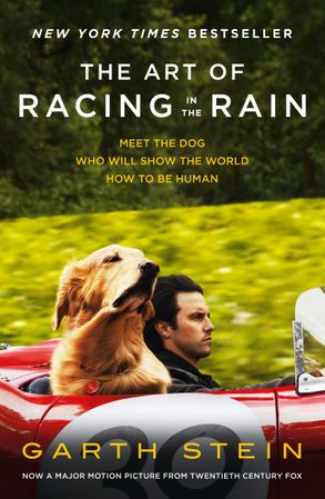 Image for The Art Of Racing In The Rain [Film Tie-In]