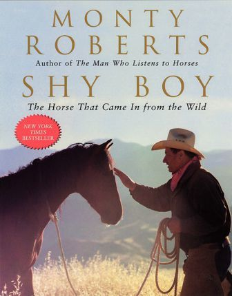 Image for Shy Boy : The Horse That Came In From the Wild