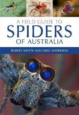 Image for A Field Guide to Spiders of Australia