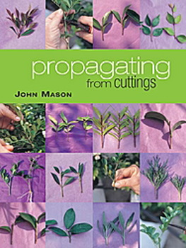 Image for Propagating from Cuttings
