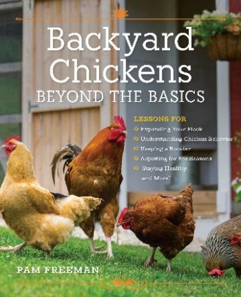 Image for Backyard Chickens Beyond the Basics : Lessons for Expanding Your Flock, Understanding Chicken Behavior, Keeping a Rooster, Adjusting for the Seasons, Staying Healthy, and More!