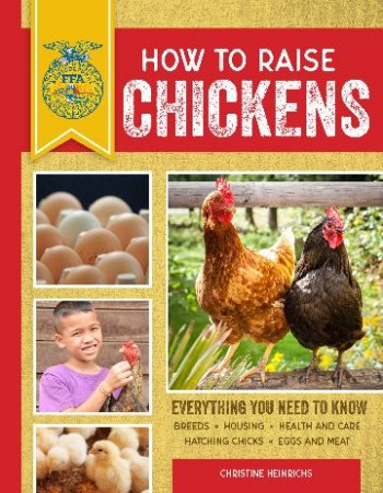 Image for How to Raise Chickens : Everything You Need to Know Third Edition