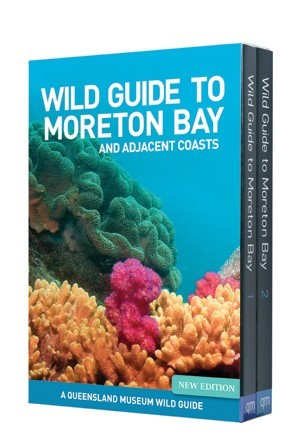 Image for Wild Guide to Moreton Bay and adjacent coasts : A Queensland Museum Wild Guide
