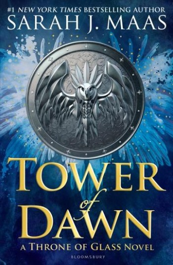 Image for Tower of Dawn #6 Throne of Glass
