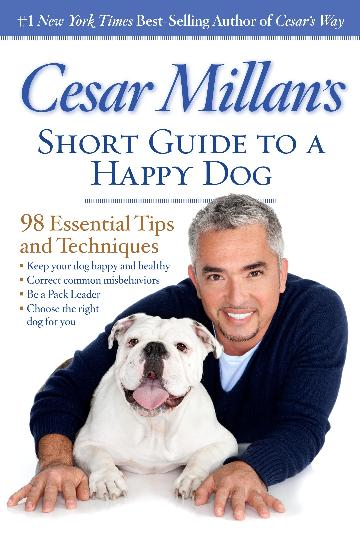 Image for Cesar Millan's Short Guide to a Happy Dog : 98 Essential Tips and Techniques