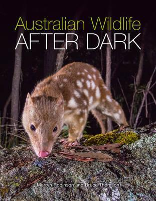 Image for Australian Wildlife After Dark