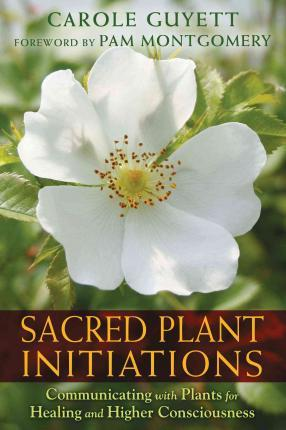 Image for Sacred Plant Initiations : Communicating with Plants for Healing and Higher Consciousness