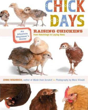 Image for Chick Days : Raising Chickens from Hatchlings to Laying Hens