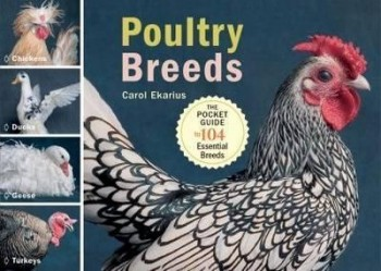 Image for Poultry Breeds : The Pocket Guide to 104 Essential Breeds