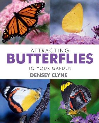 Image for Attracting Butterflies to Your Garden