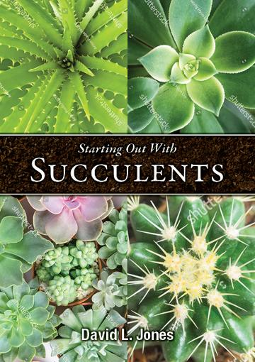 Image for Starting Out with Succulents
