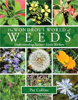 Image for The Wondrous World of Weeds : Understanding Nature's Little Workers