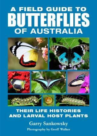 Image for A Field Guide to Butterflies of Australia : Their Life Histories and Larval Host Plants