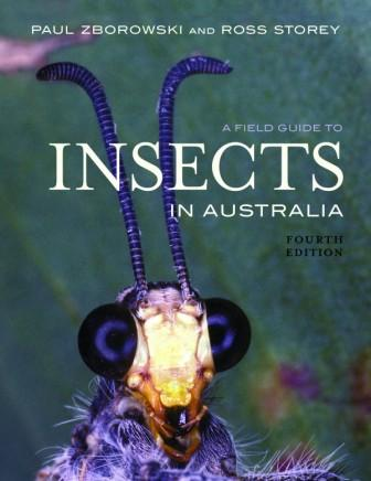 Image for A Field Guide To Insects in Australia [Fourth Edition]