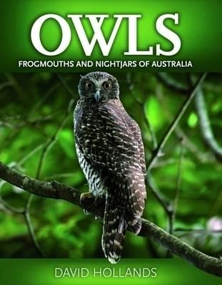 Image for Owls Frogmouths and Nightjars of Australia [used book][hard to get]